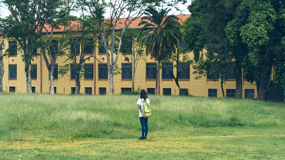 O Parque Belém, na zona leste da cidade, uma área de 210 mil metros quadrados onde até 2005 funcionou uma unidade da então chamada Fundação Estadual para o Bem-Estar do Menor (Febem) —  hoje, Fundação Casa — , é um exemplo de reflorestamento urbano.