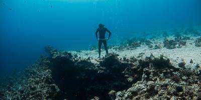 """""""Descobri um outro eu a 20 metros de profundidade"""""""