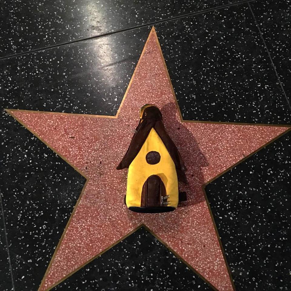 A casinha de Mauro partiu do Grajaú e chegou em Hollywood