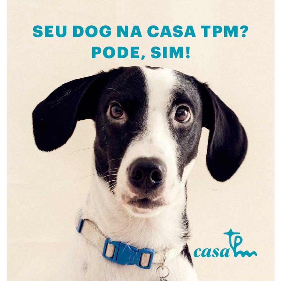 Casa Tpm 2019: primeira edição pet friendly