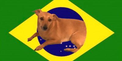 Brasil: república dos memes