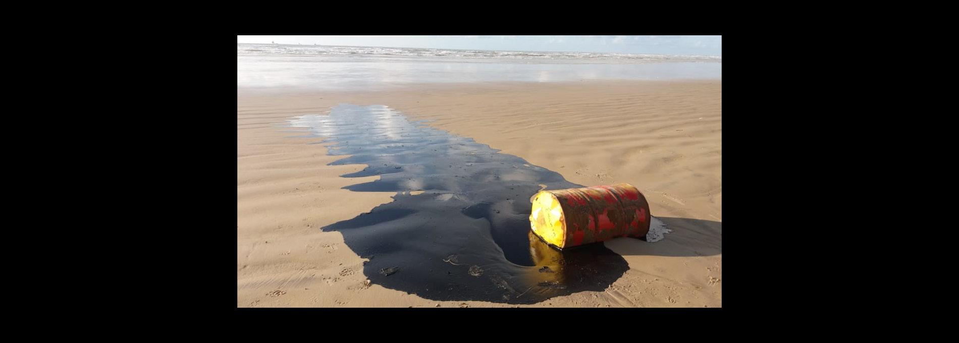 Quem derramou o óleo no Nordeste?