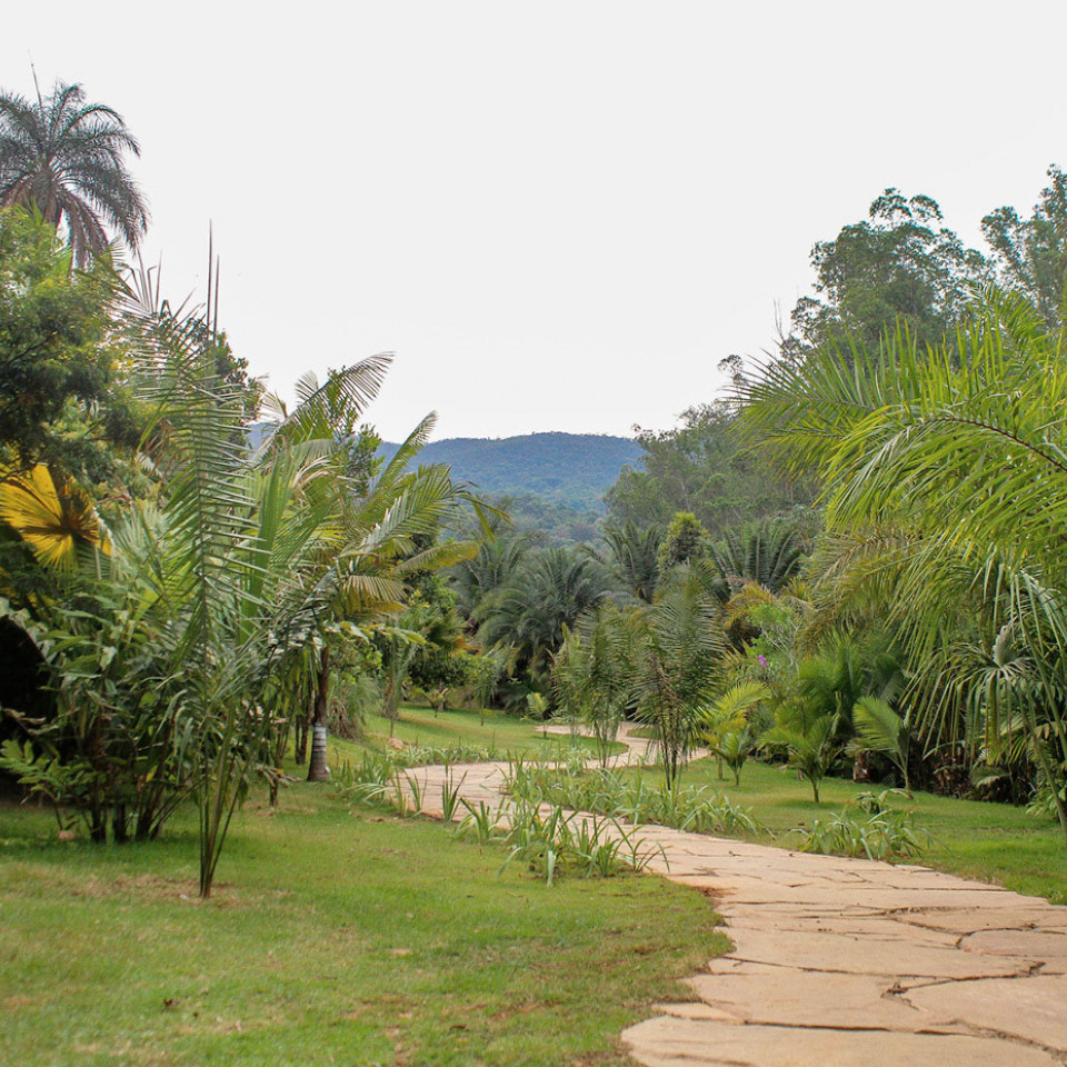 O novo jardim botânico Sombra e Água Fresca