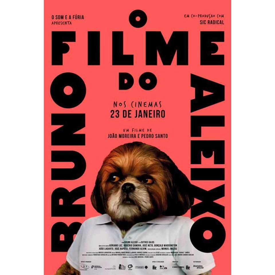 Cartaz do longa de Bruno Aleixo, com o próprio em destaque