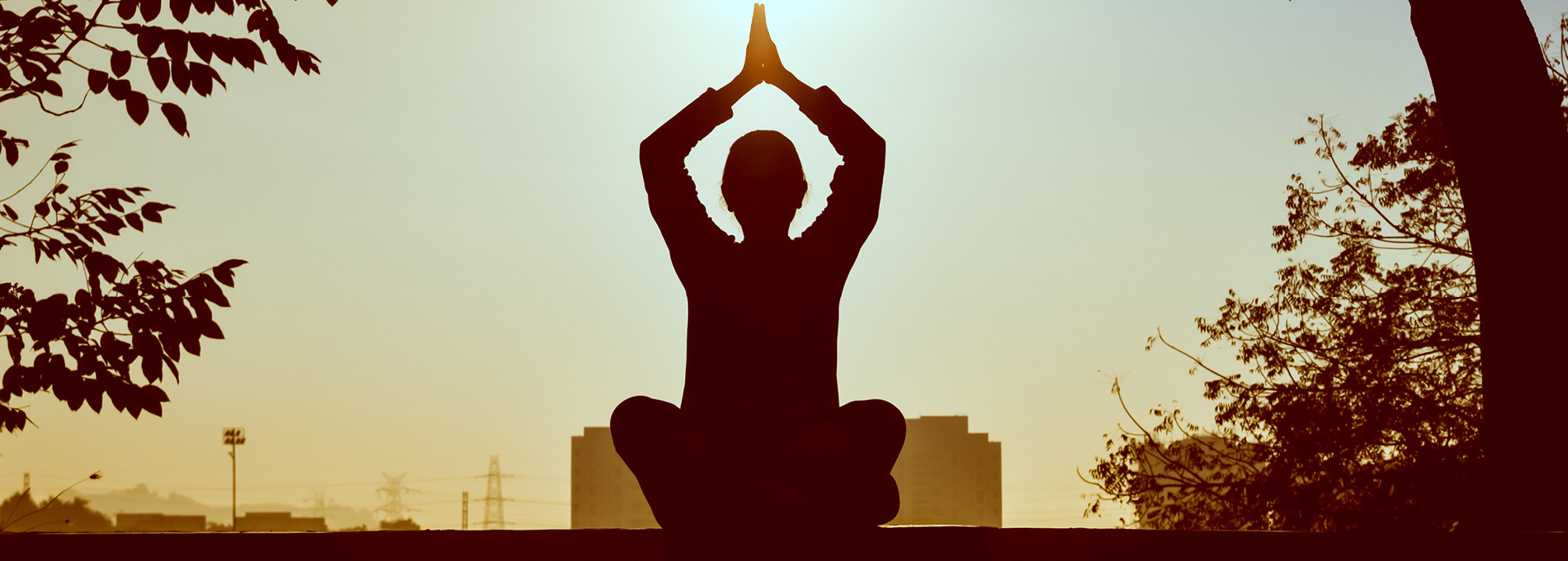 Meditação para tempos brutos