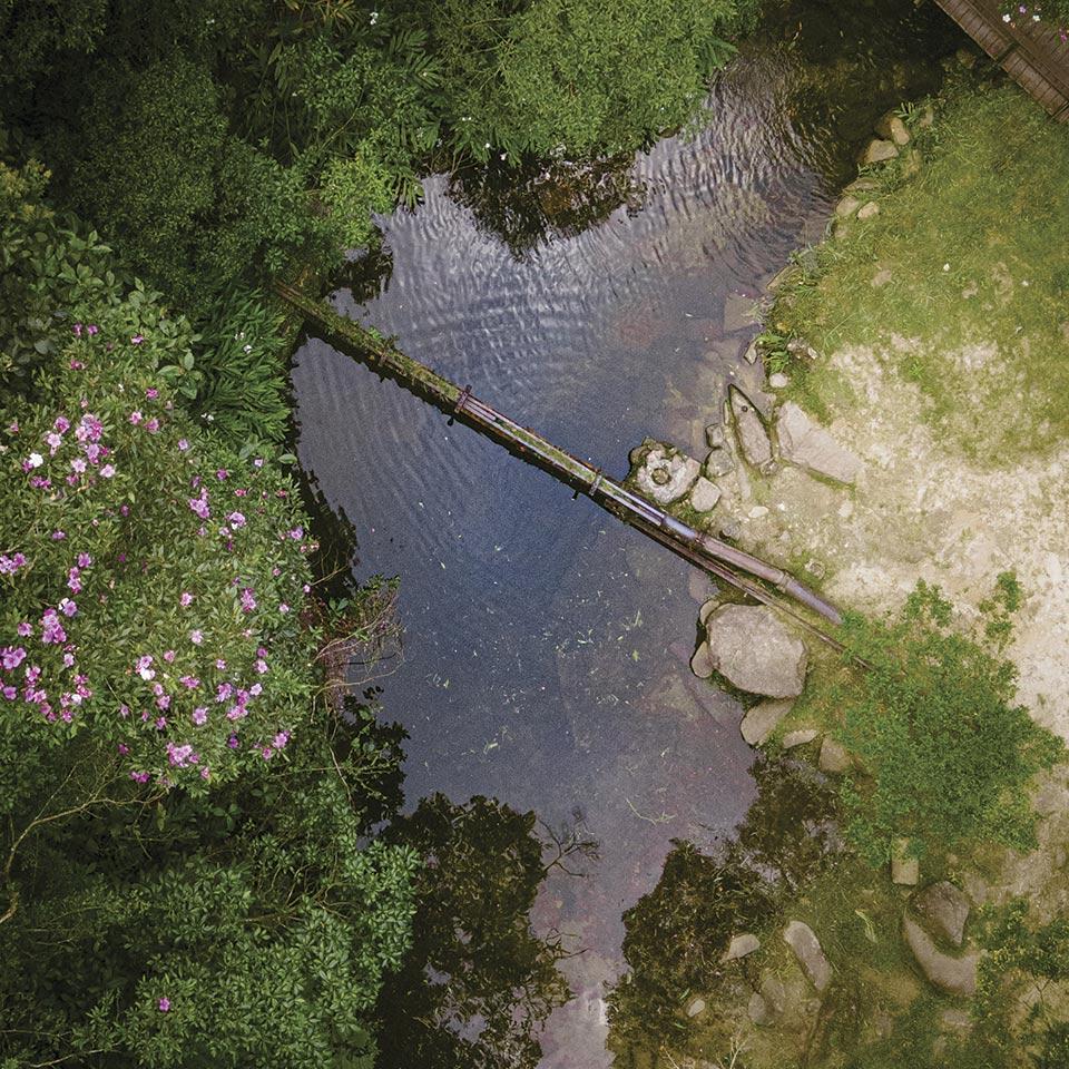 Vista aérea do Parque Natural Municipal Nascentes de Paranapiacaba, onde estão localizadas nascentes do rio Pinheiros