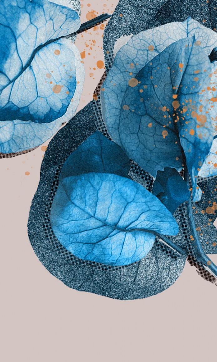 Flores azuis sobre um fundo cinza ilustram a reportagem sobre os mitos e verdades da Leia Maria da Penha